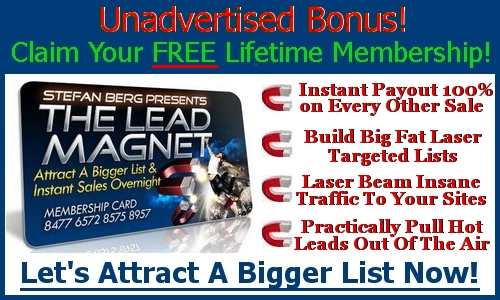 Become a traffic magnet!